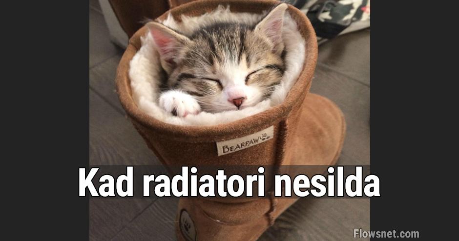 Kad radiatori nesilda..